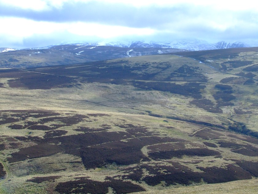 Cheviot Hills as seen from Yeavering Bell looking south, with faint traces of relict field system visible