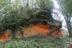 Sandstone outcrop, Brighstone